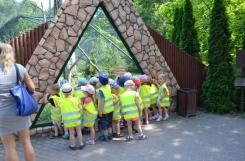 2019-06-18 - Rybki - Wycieczka do Ogrodu Zoobotanicznego w Toruniu