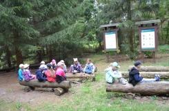 2019-07-23 - Wszystkie grupy - Wycieczka do Leśnictwa Olek