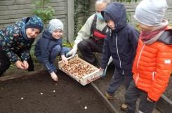 2020-10-23 - Motylki, Pszczółki -  Jesienne prace w ogrodzie